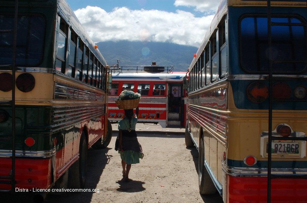 Mini guide de survie  :  voyager en bus !