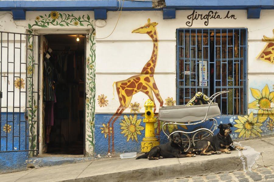 berceau girafe boutique