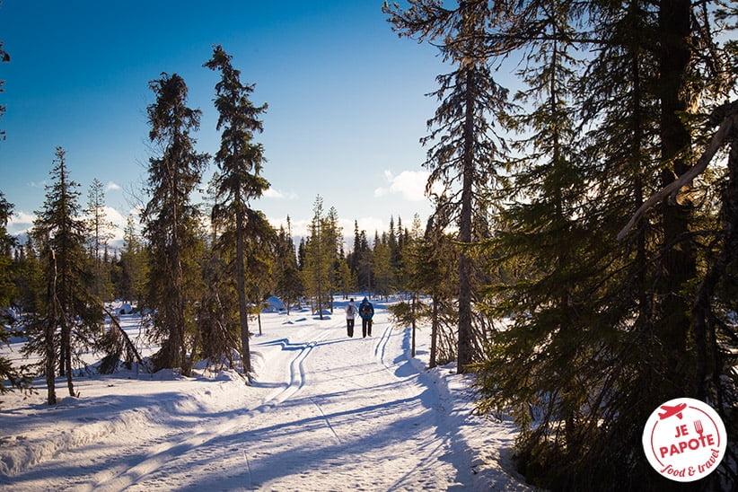 parc national de pallas en laponie finlande