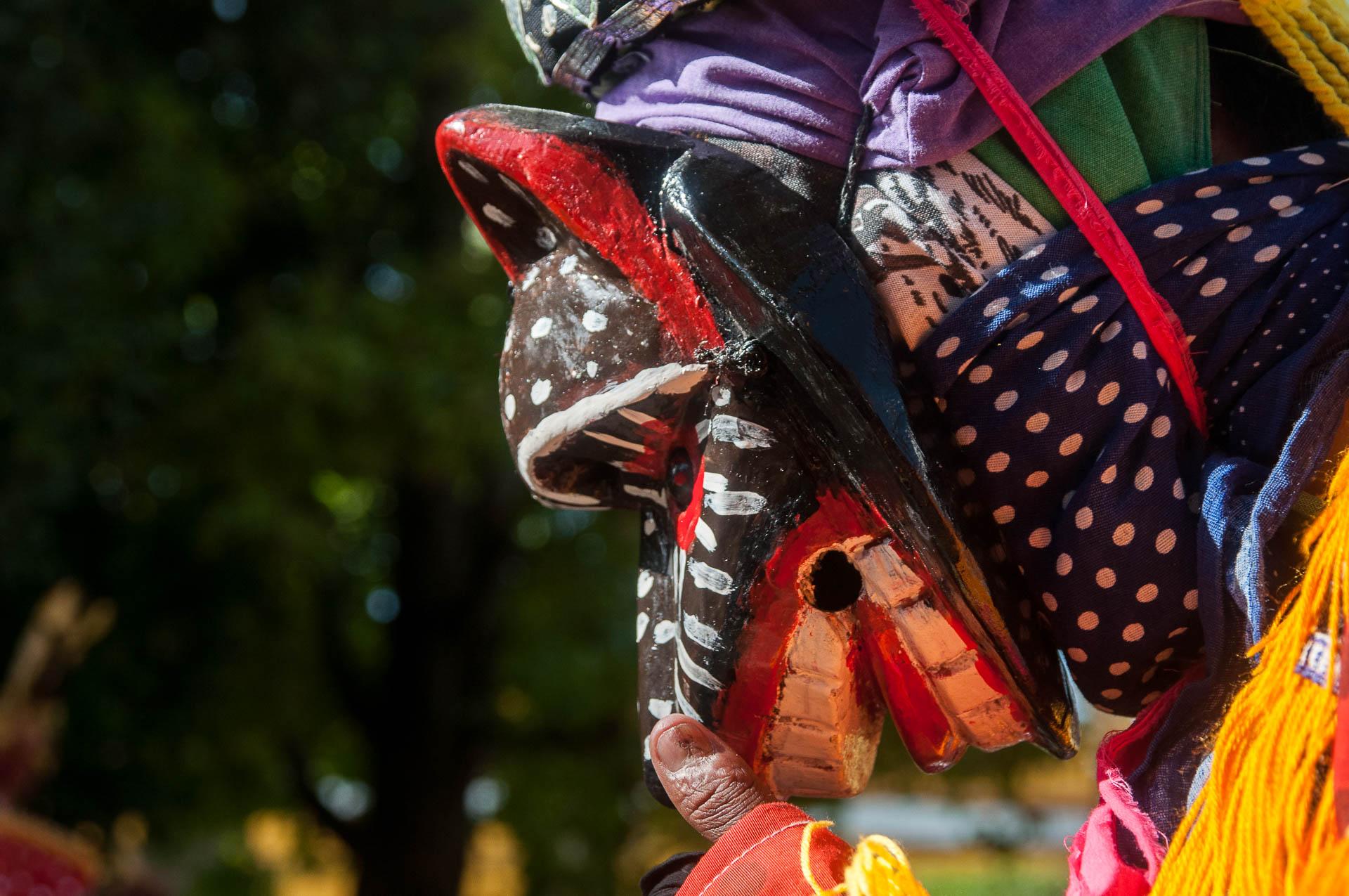 coban masque singe 1 - Les globe blogueurs - blog voyage nature