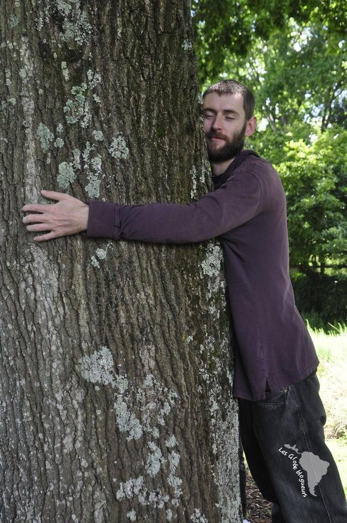 arbre congé sabbatique