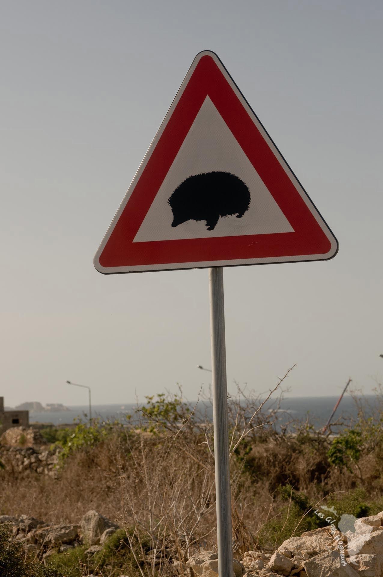 panneau signalisation hérisson malte île