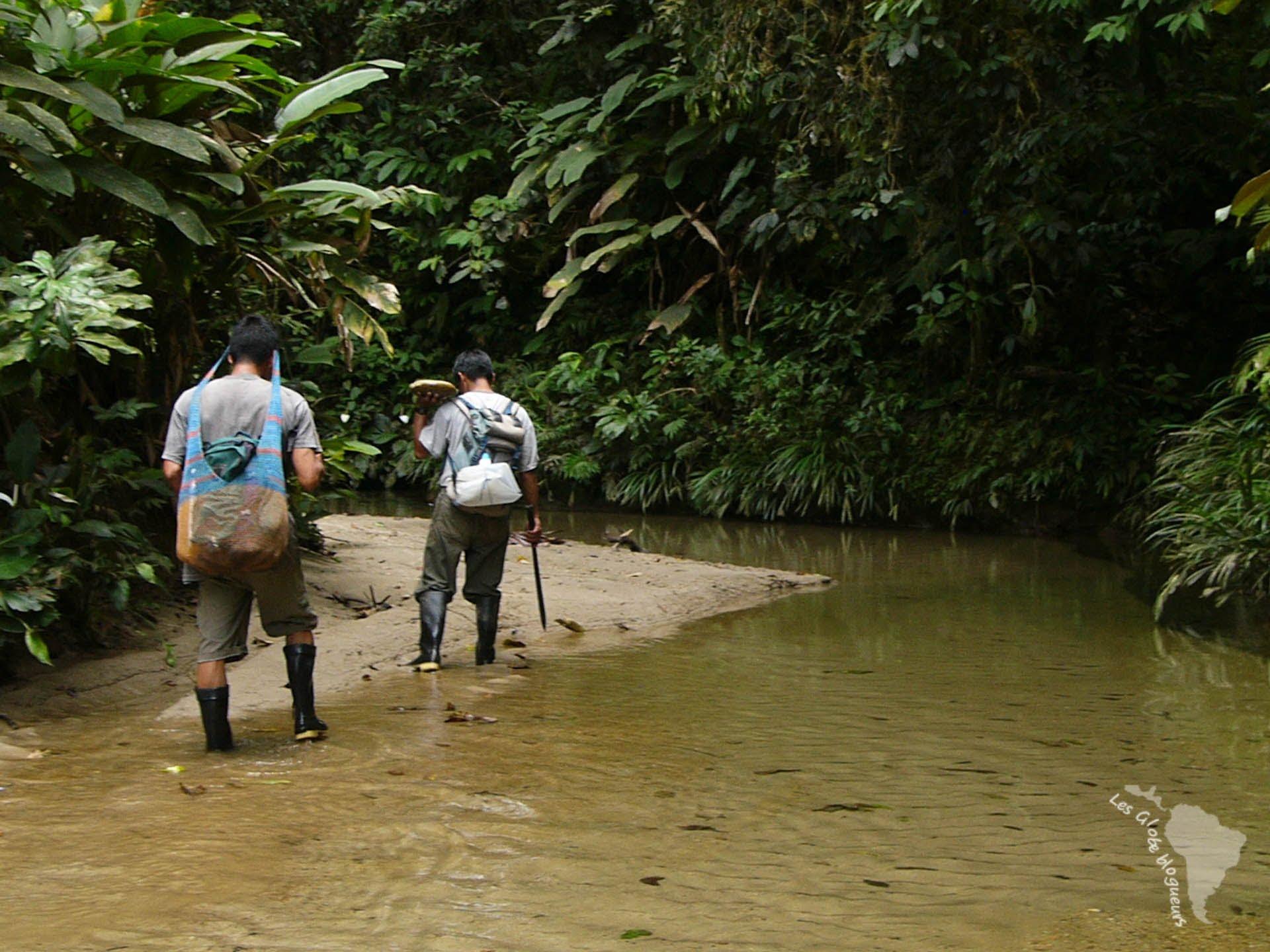 trek Amazonie