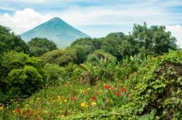 volcan ometepe vegetation uai