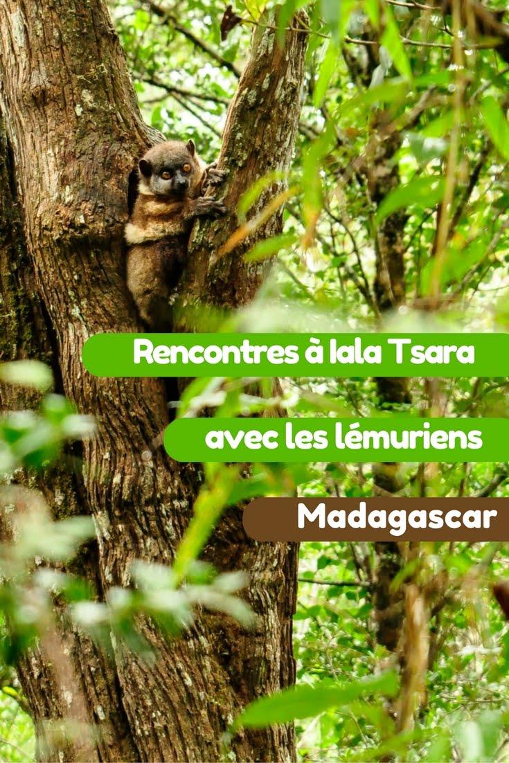 Iala tsara - Les globe blogueurs - blog voyage nature