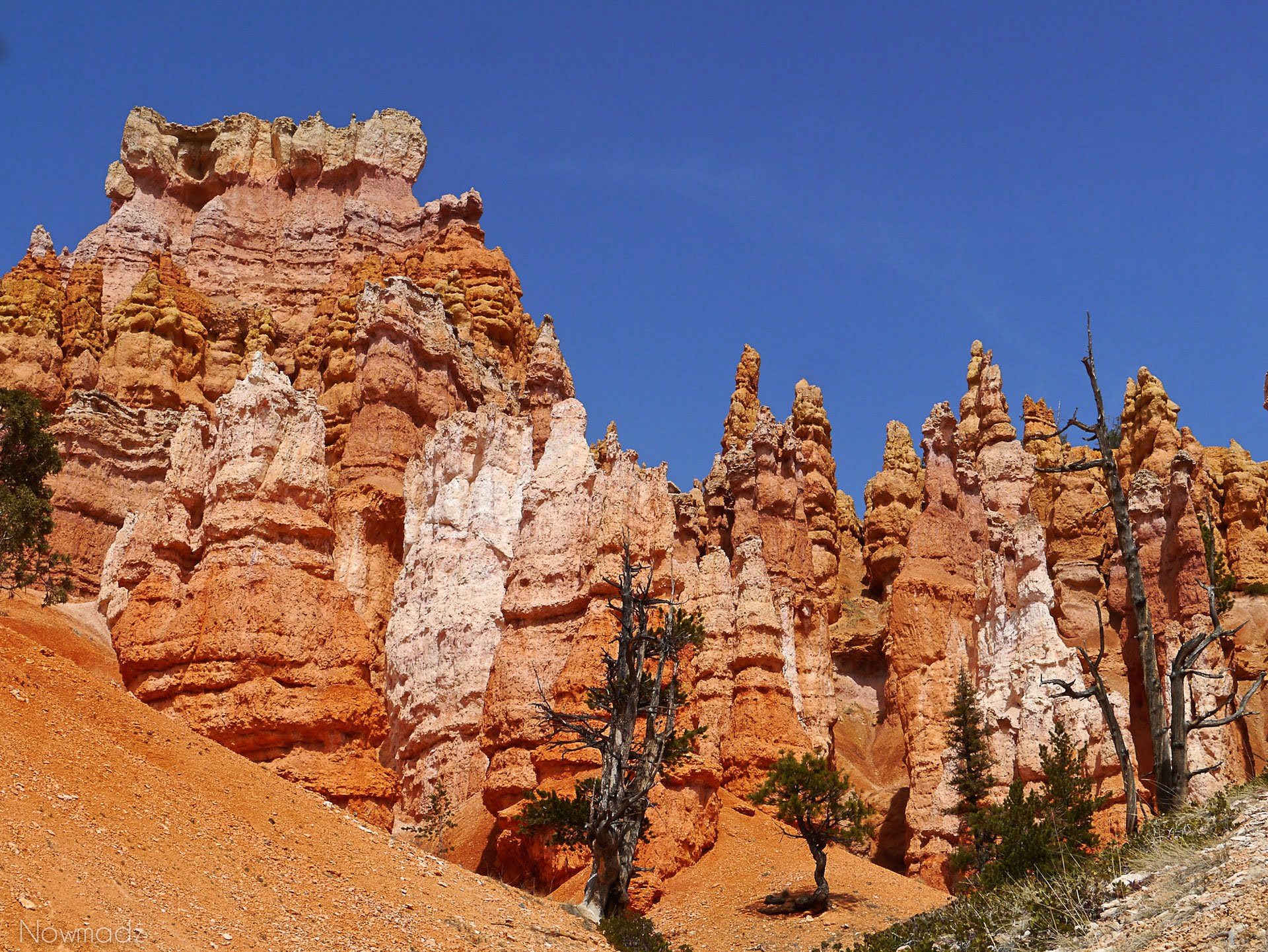Bryce canyon Nowmadz