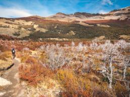 Argentine paysages itinéraires et carnets de voyage