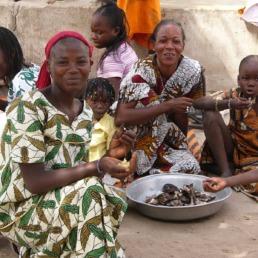 Nos carnets de voyage au Sénégal