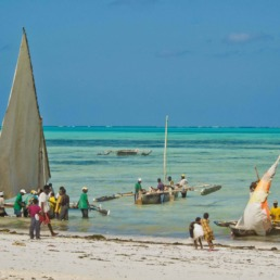 Nos carnets de voyage en Tanzanie