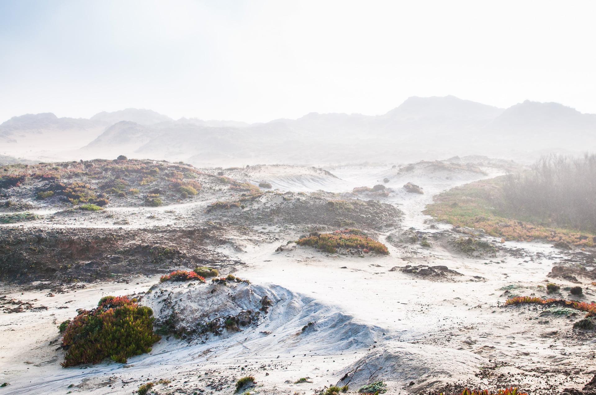 almogarve dunes dans la brume 2