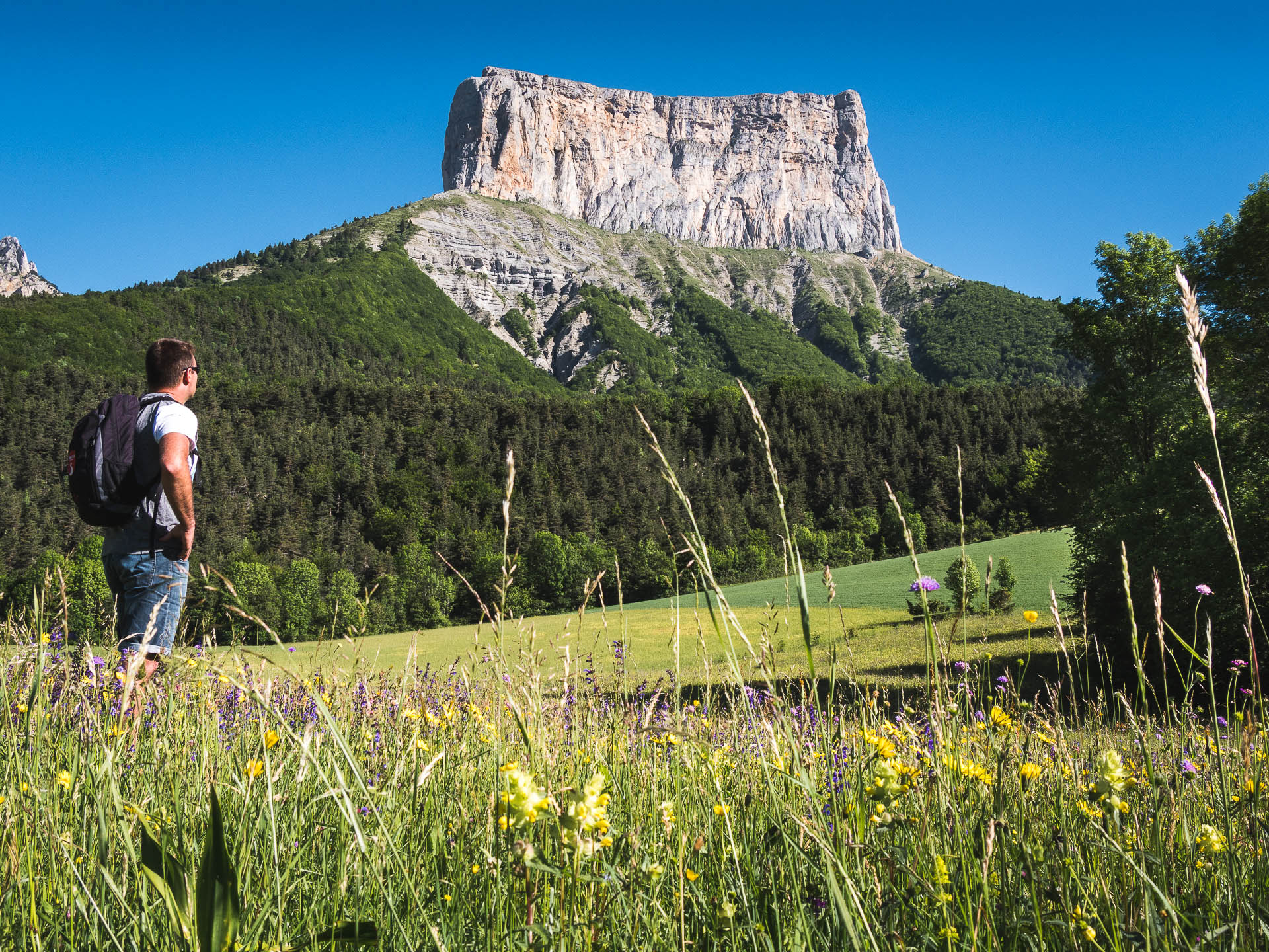 trièves mont aiguille olivier - Les globe blogueurs - blog voyage nature