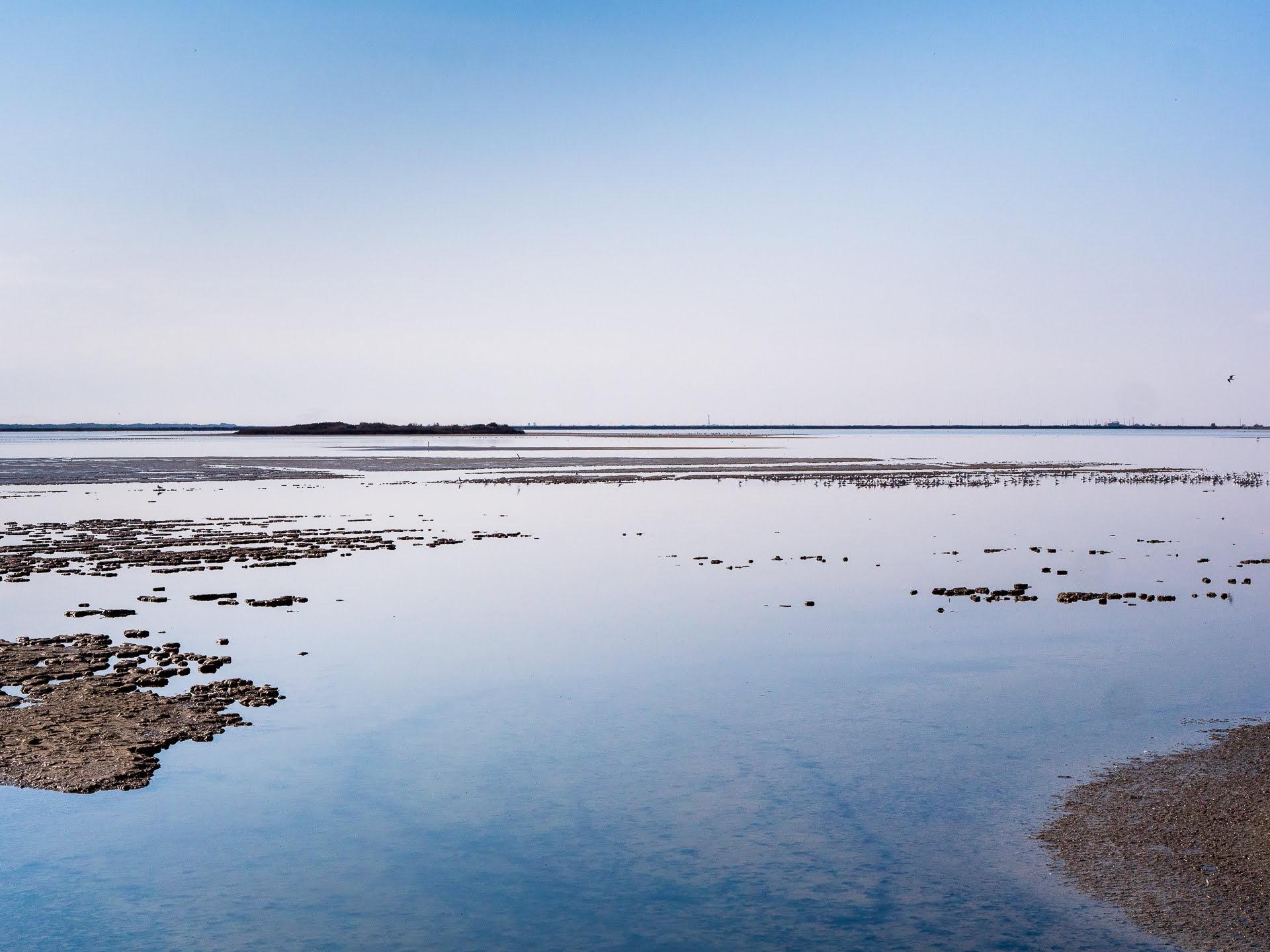 camargue paysage 3