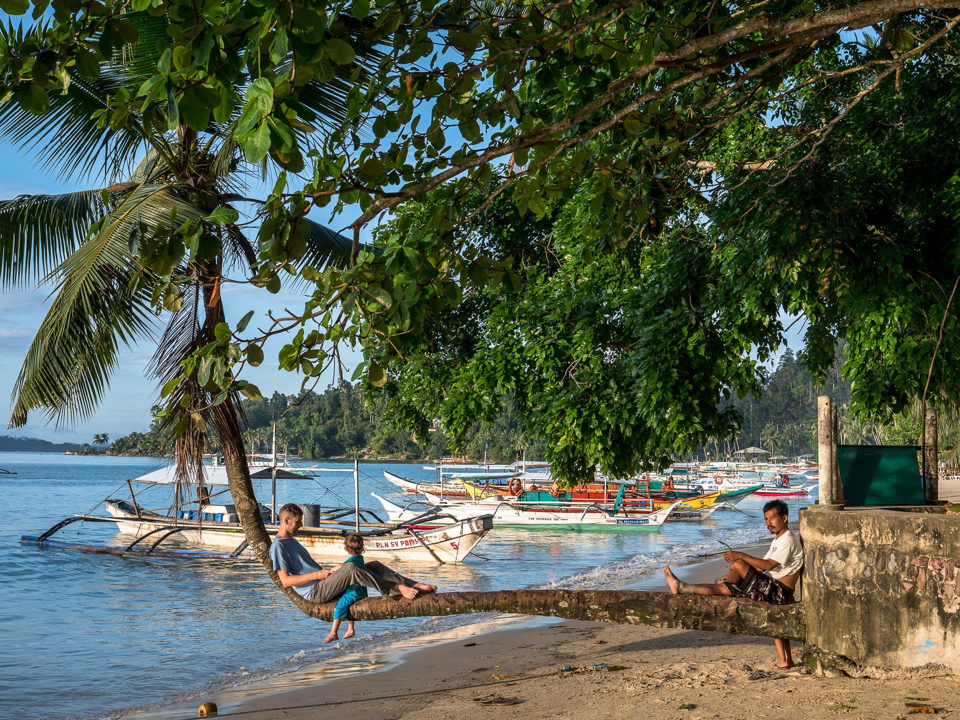Port barton SH palmier - Les globe blogueurs - blog voyage nature