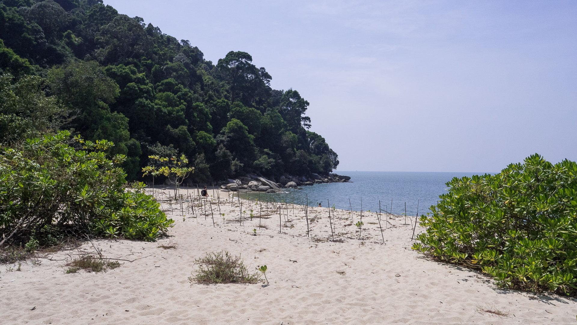 Penang parc naturel plage - Les globe blogueurs - blog voyage nature