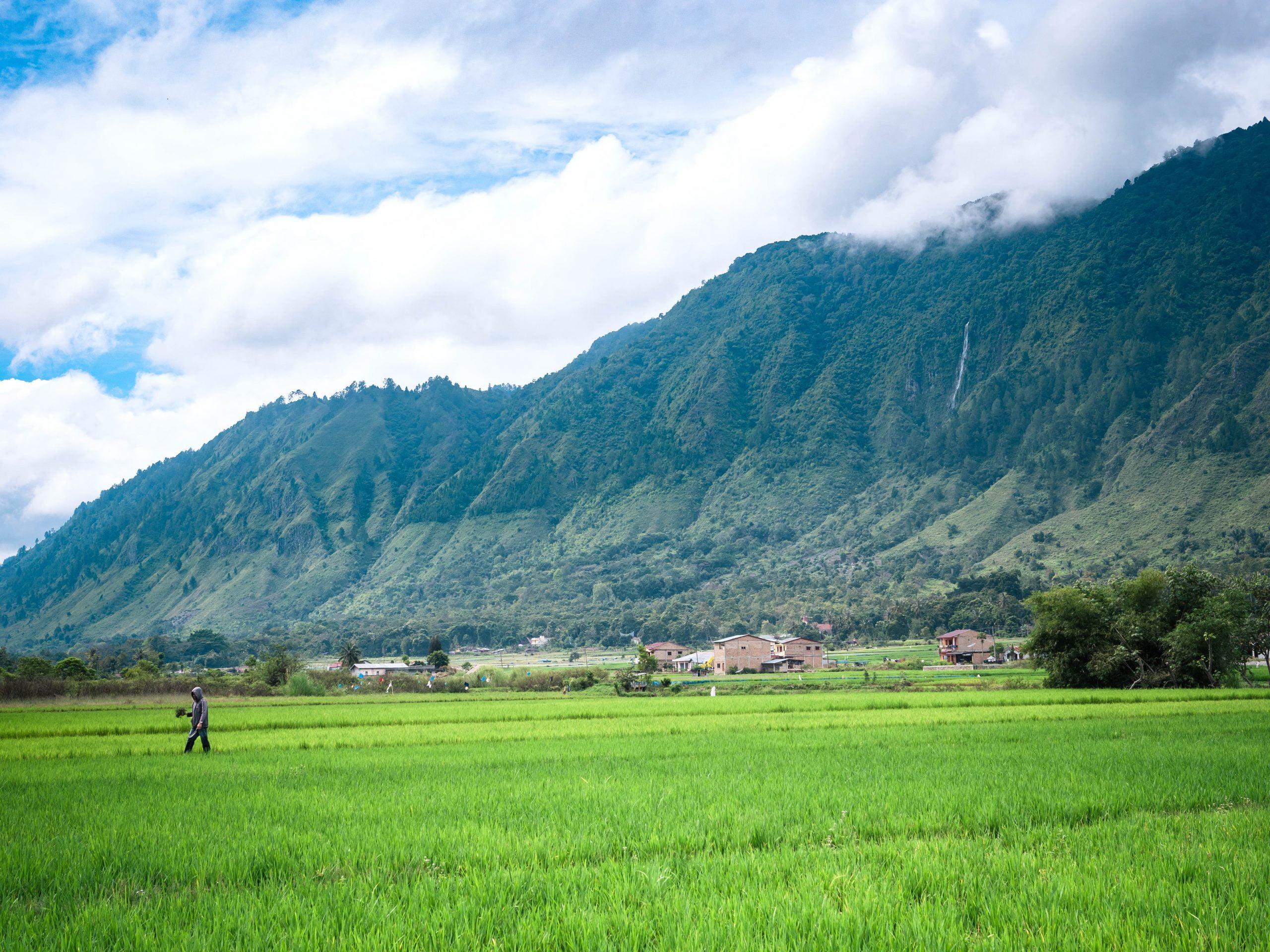 lac toba montagne rizière scaled - Les globe blogueurs - blog voyage nature