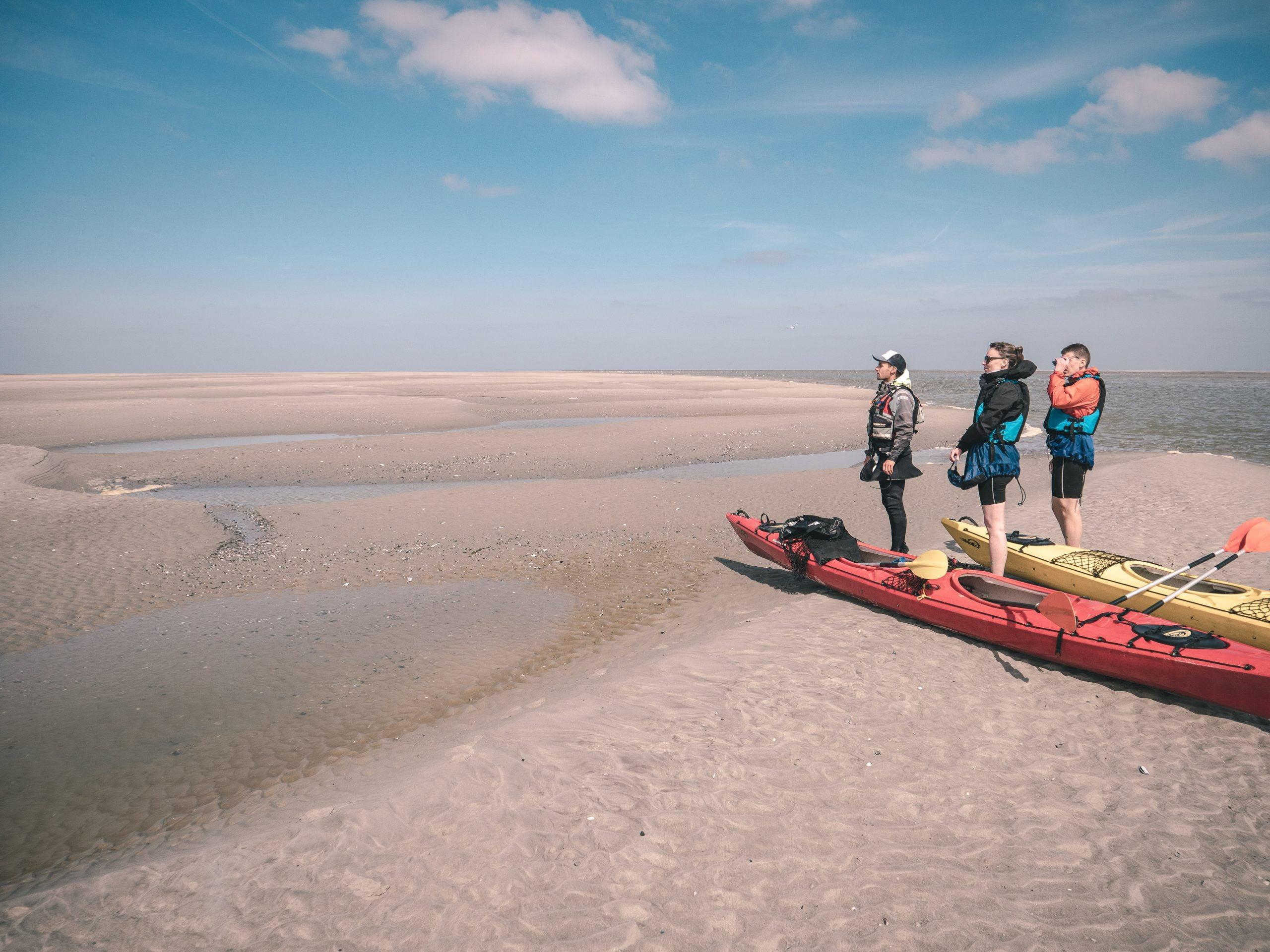 Sortie en Kayak dans la baie de Somme à la rencontre des phoques