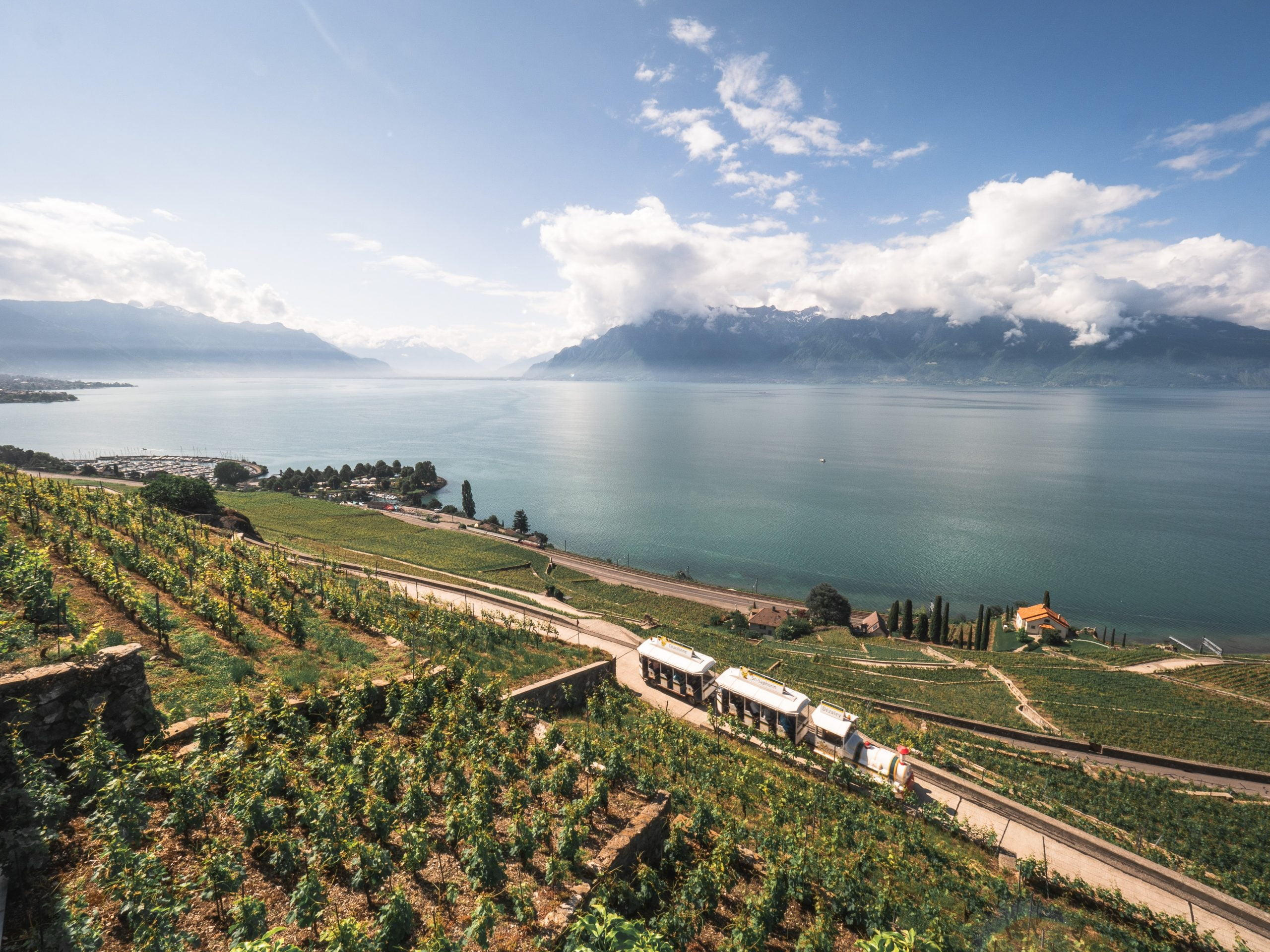 lavaux train scaled
