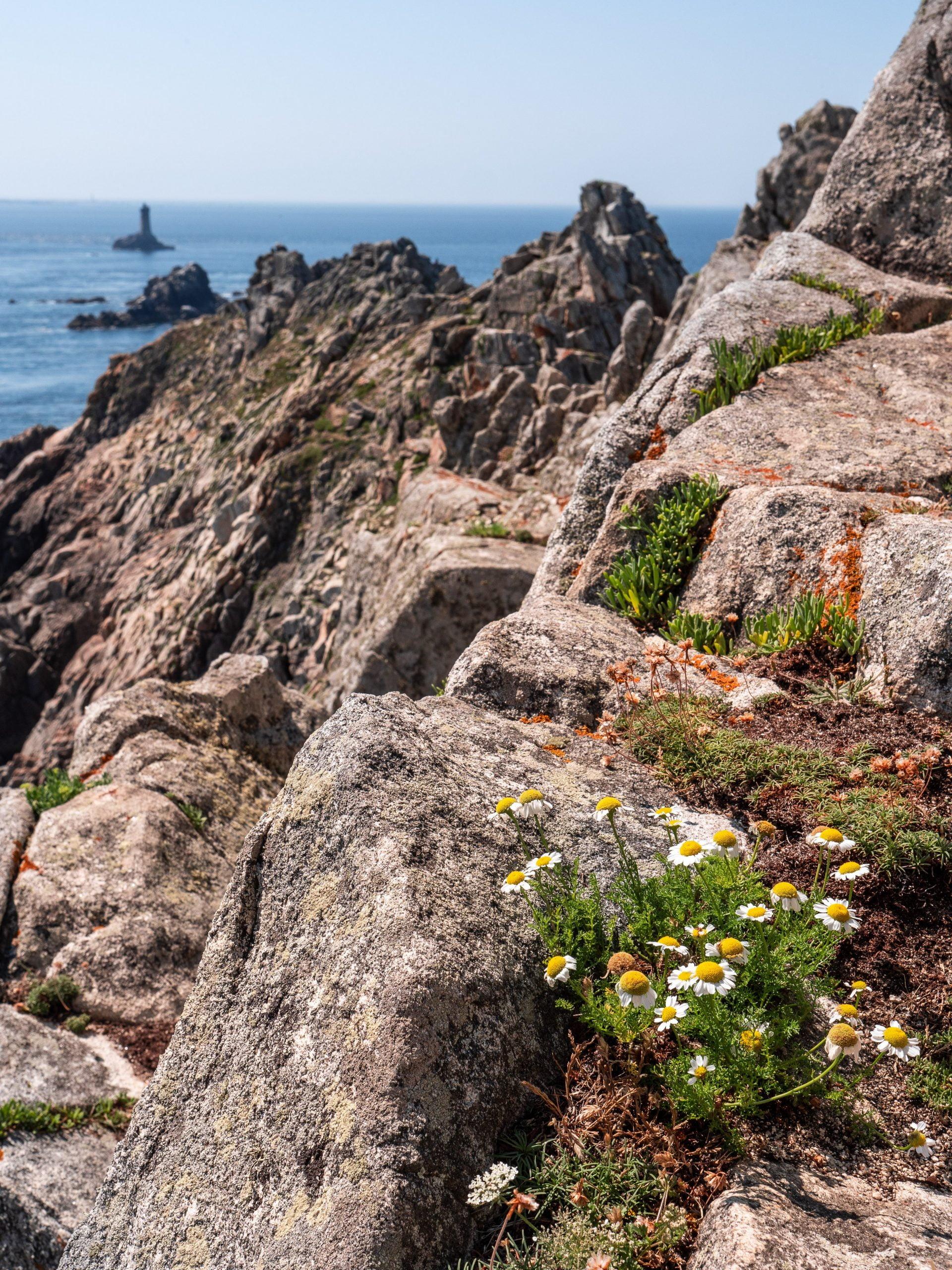 Que faire en Bretagne, visite pointe du raz