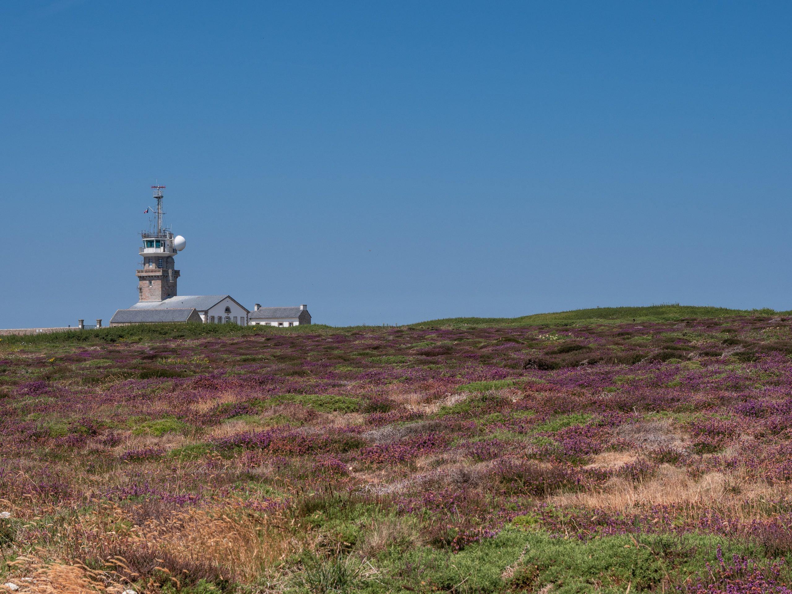 pointe du raz semaphore lande paysage scaled - Les globe blogueurs - blog voyage nature