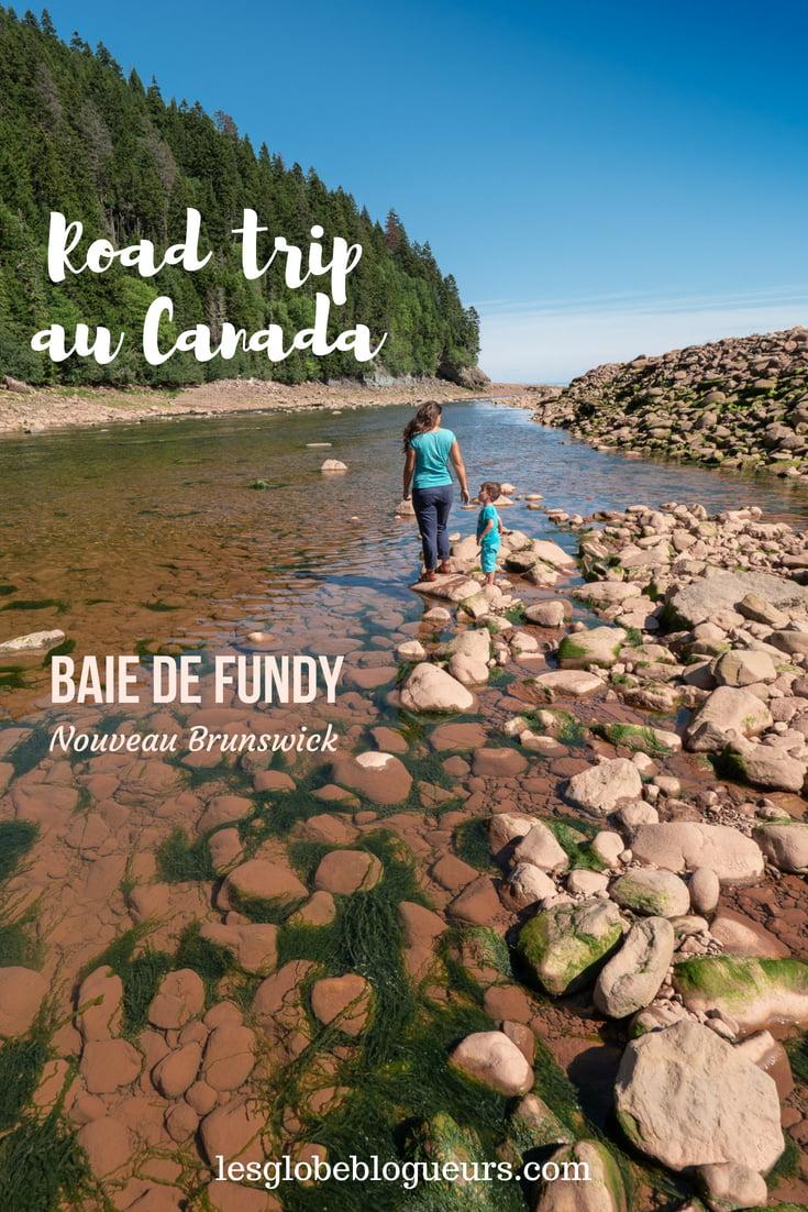 baie de fundy - Les globe blogueurs - blog voyage nature