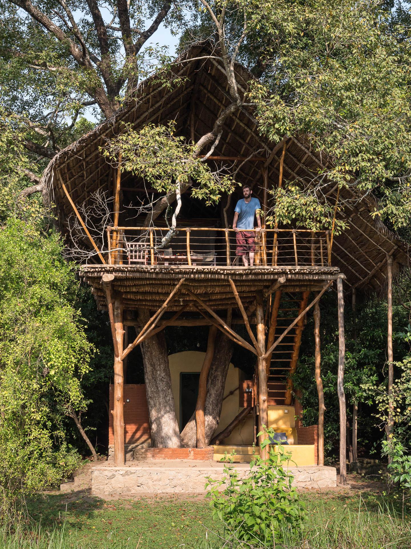 Sigiriya back to beyond 12 - Les globe blogueurs - blog voyage nature