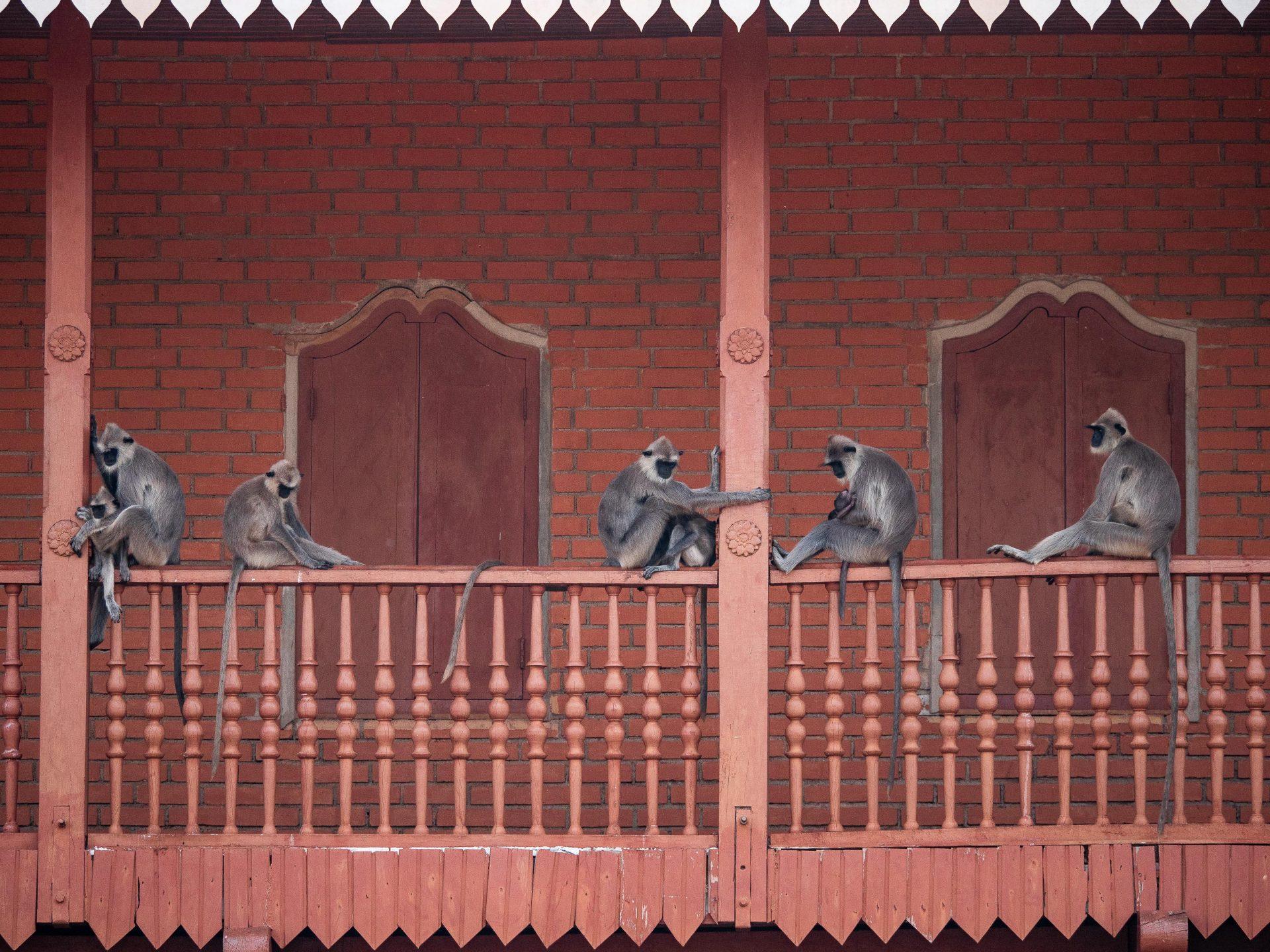 visiter anuradhapura