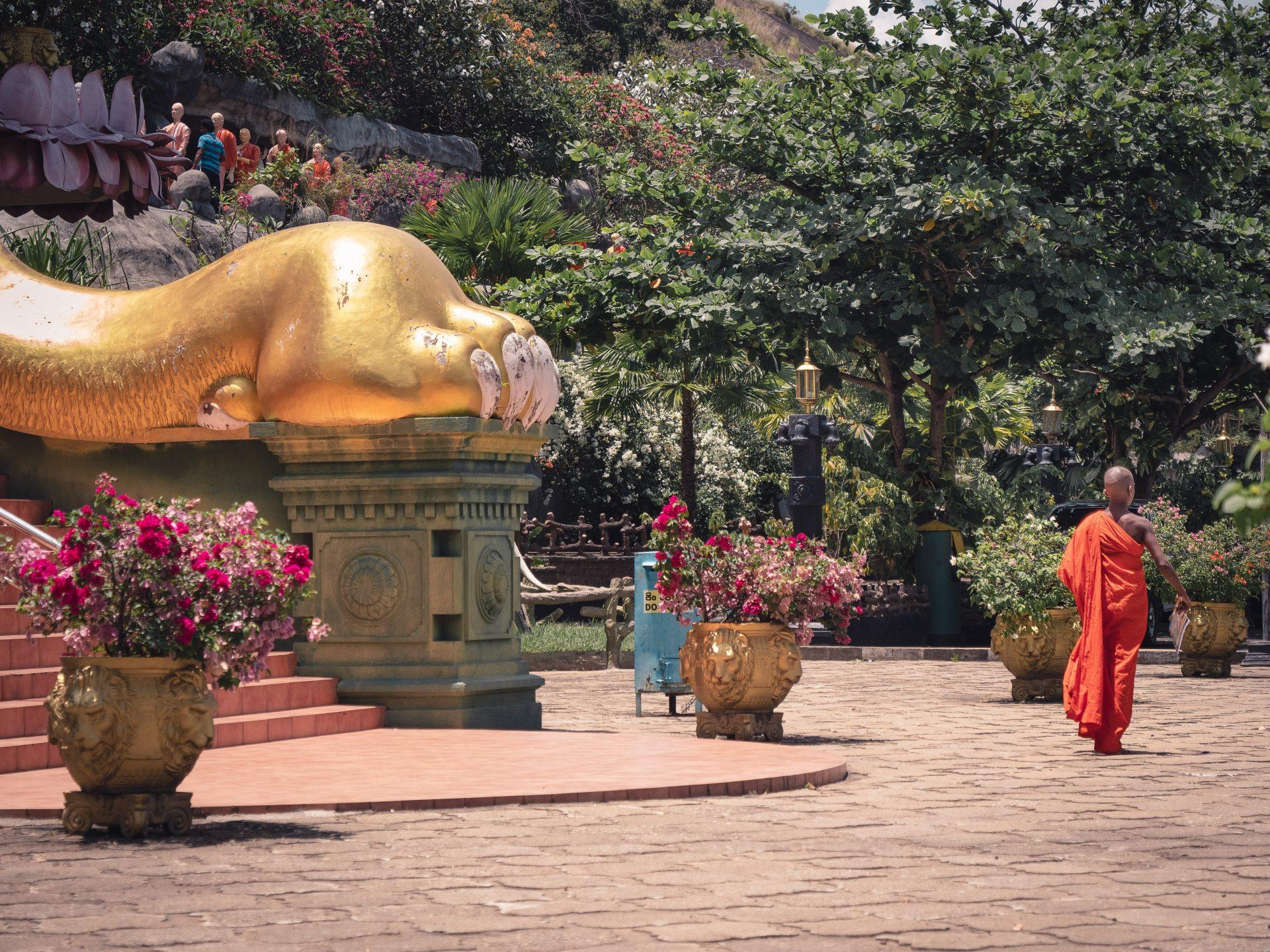 Temple d'or de dambulla au Sri Lanka - moine