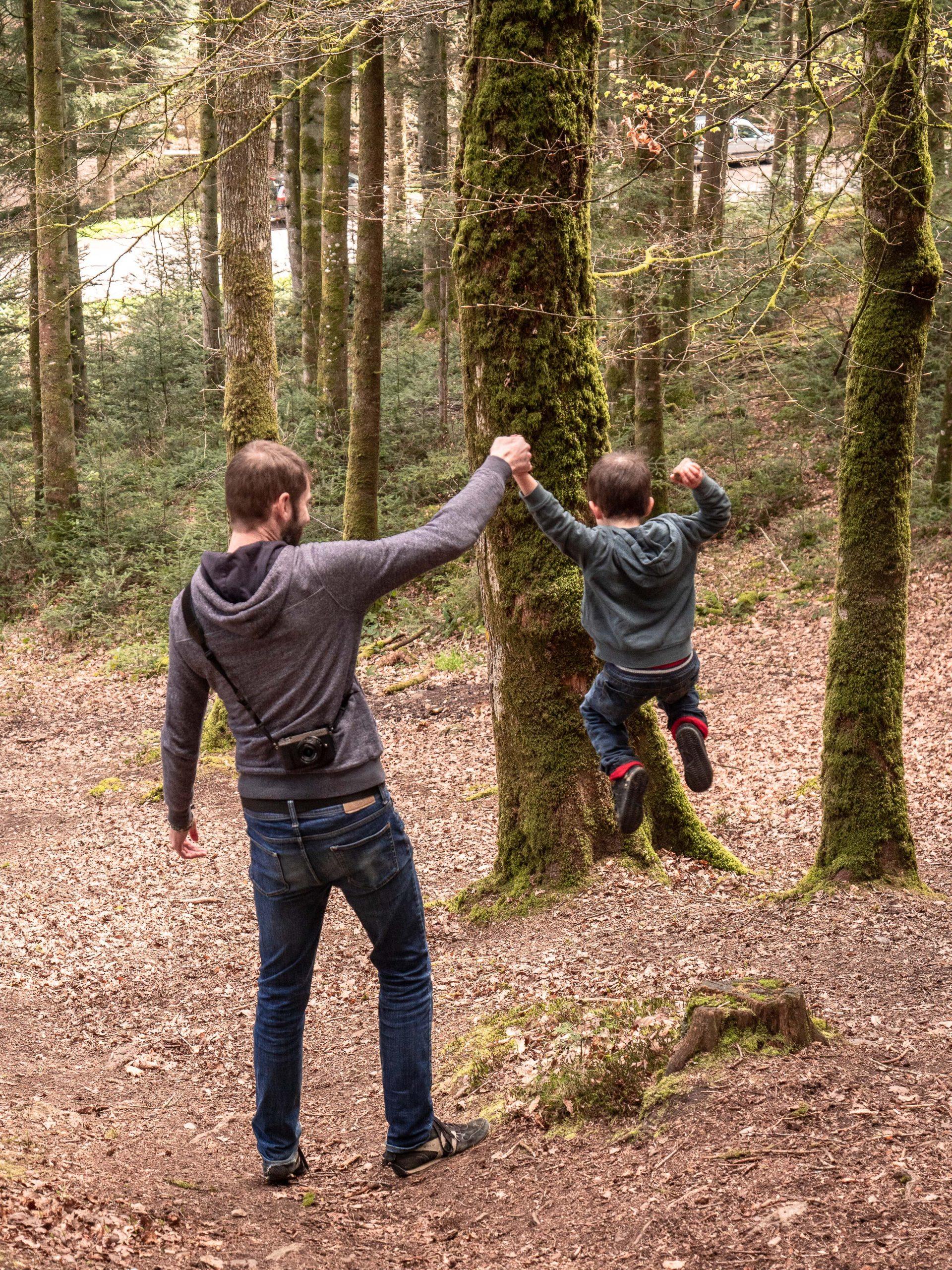 Forêt d'Ecouves près d'Alençon
