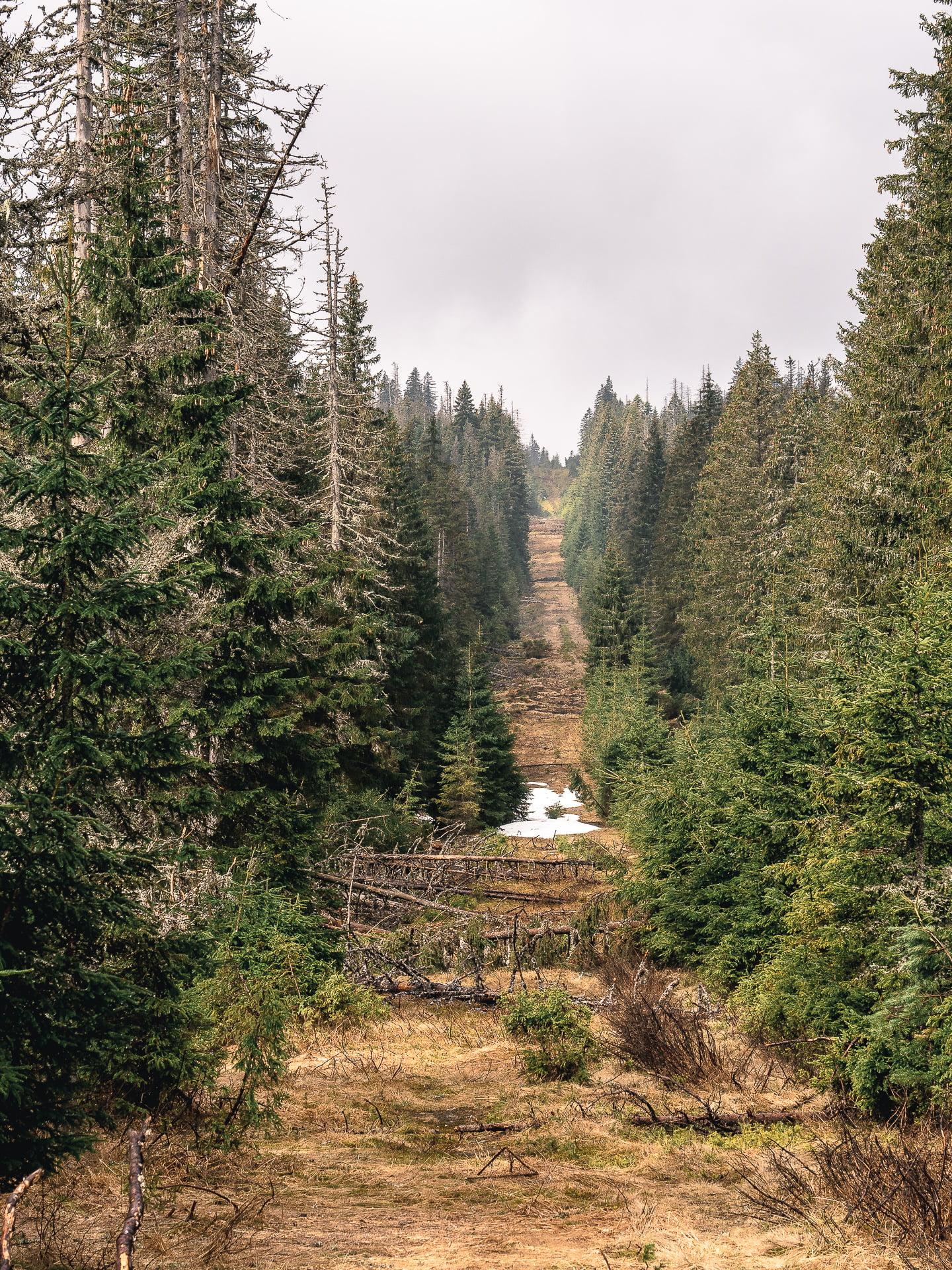 Rideau de fer Sumava en République Tchèque, Bohême du sud