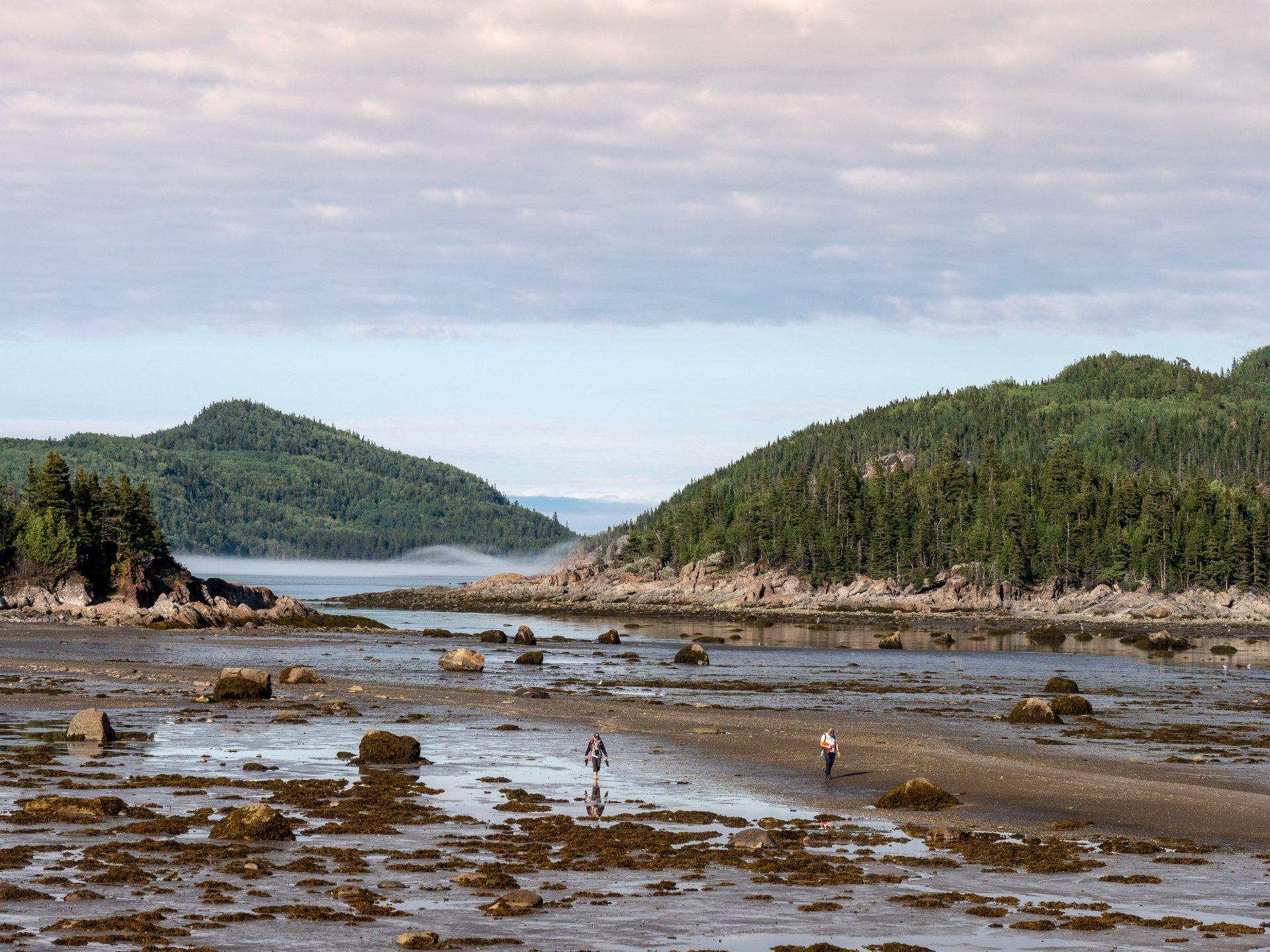 Marée parc national du Bic Gaspésie