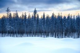 Laponie 1528 scaled uai