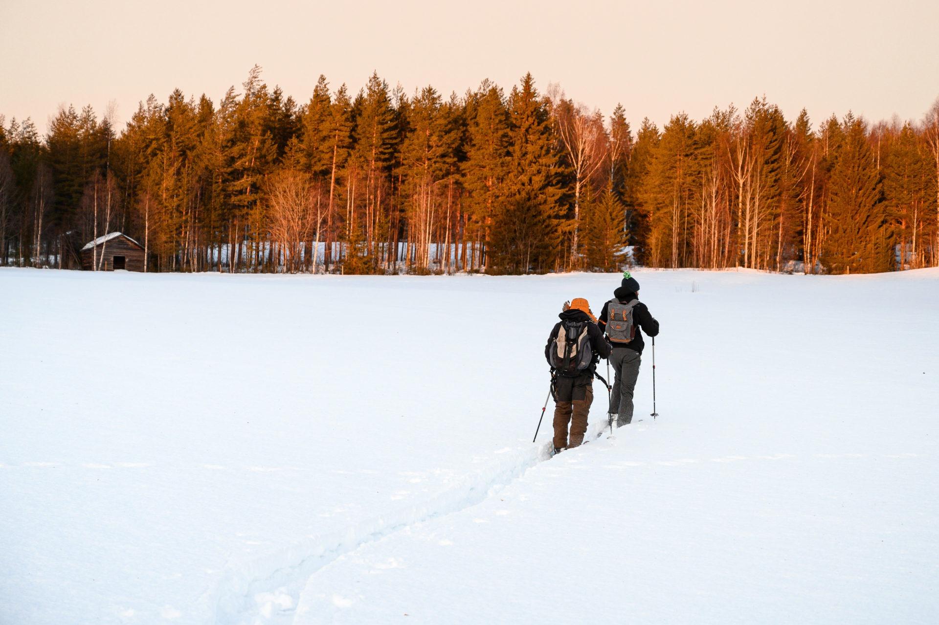 Laponie 1731 - Les globe blogueurs - blog voyage nature