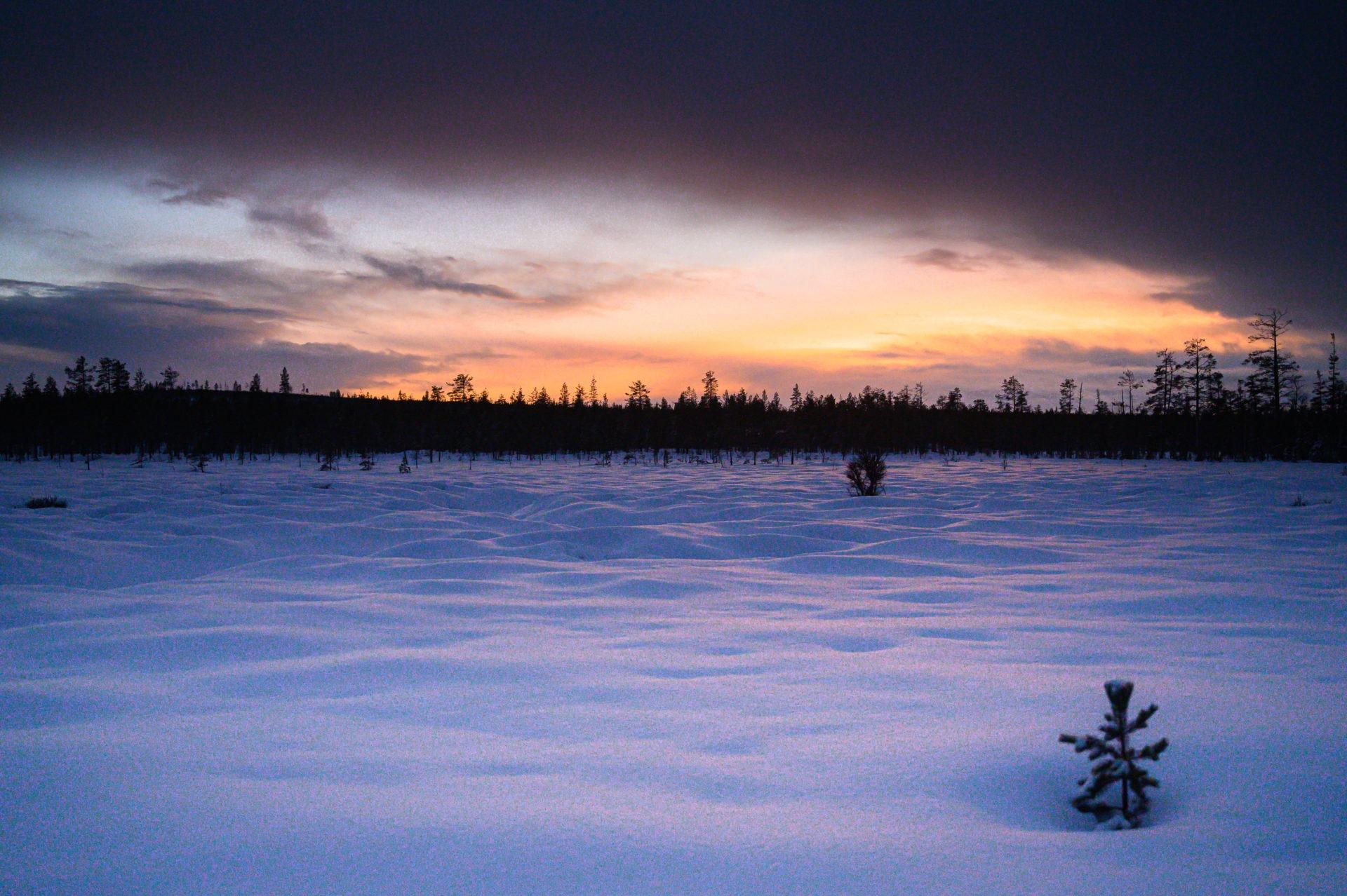 Laponie 2624