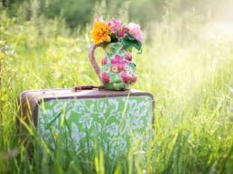 jill wellington countryside grass outdoor 35799 5 uai - Les globe blogueurs - blog voyage nature