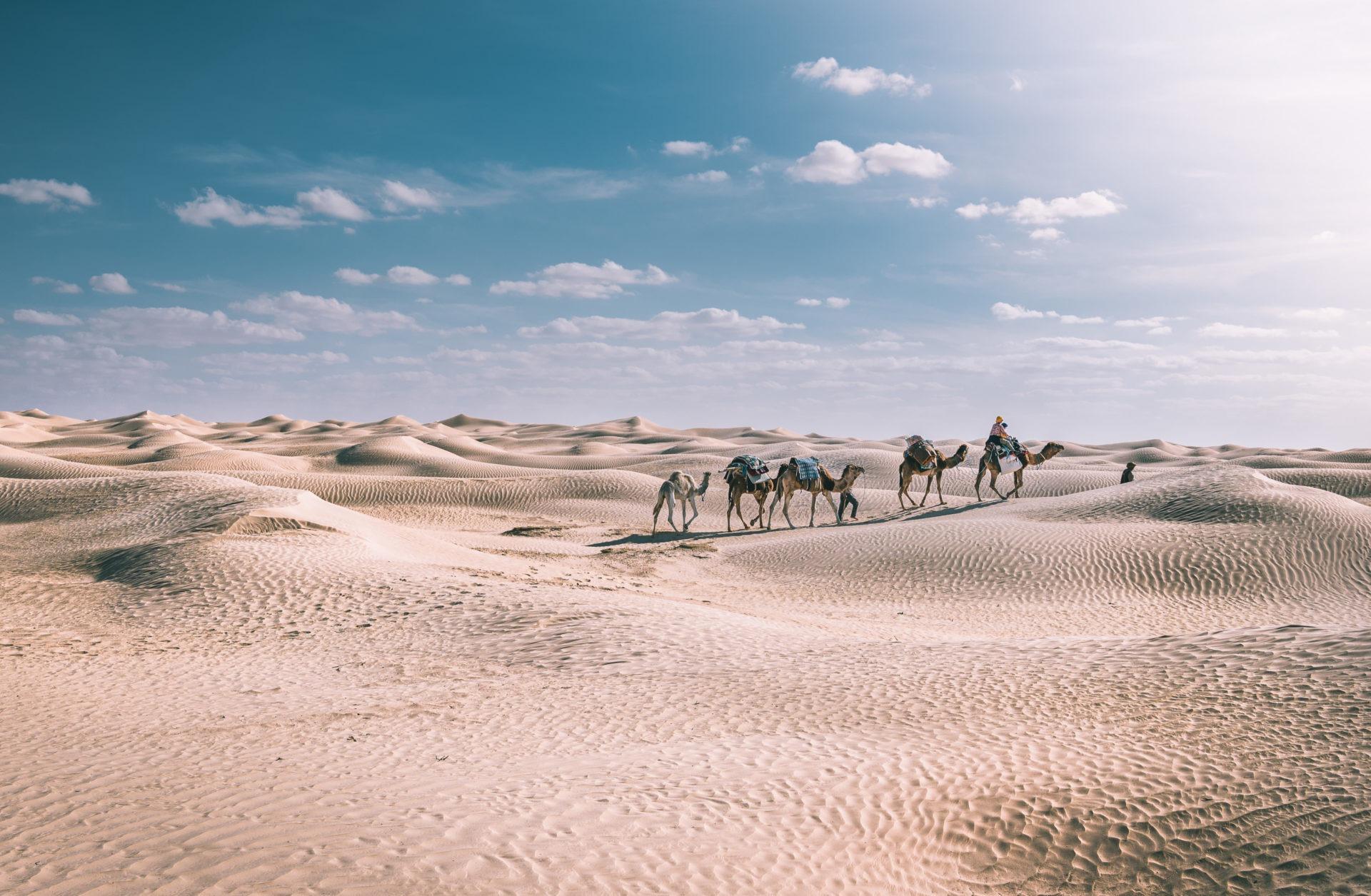 désert tunisie meharée
