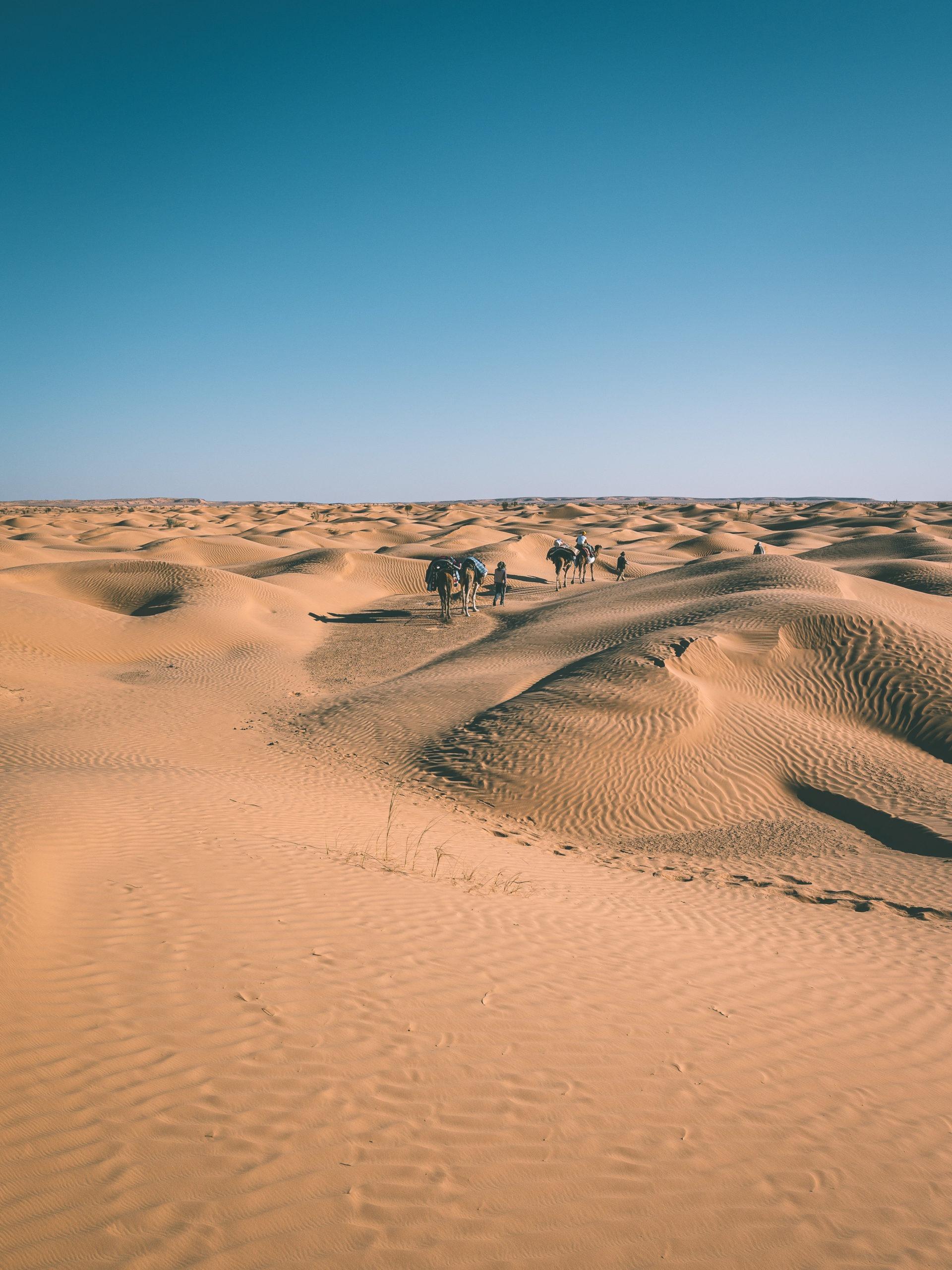 quand partir douz tunisie