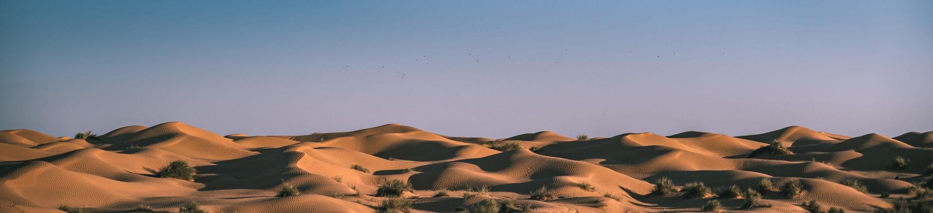 Dunes de ksar ghilane en Tunisie