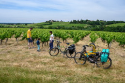itinéraire vélo vignoble nantes