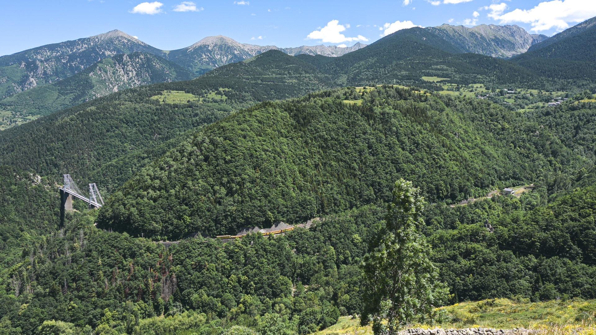 PNR pyrenees catalanes 6559