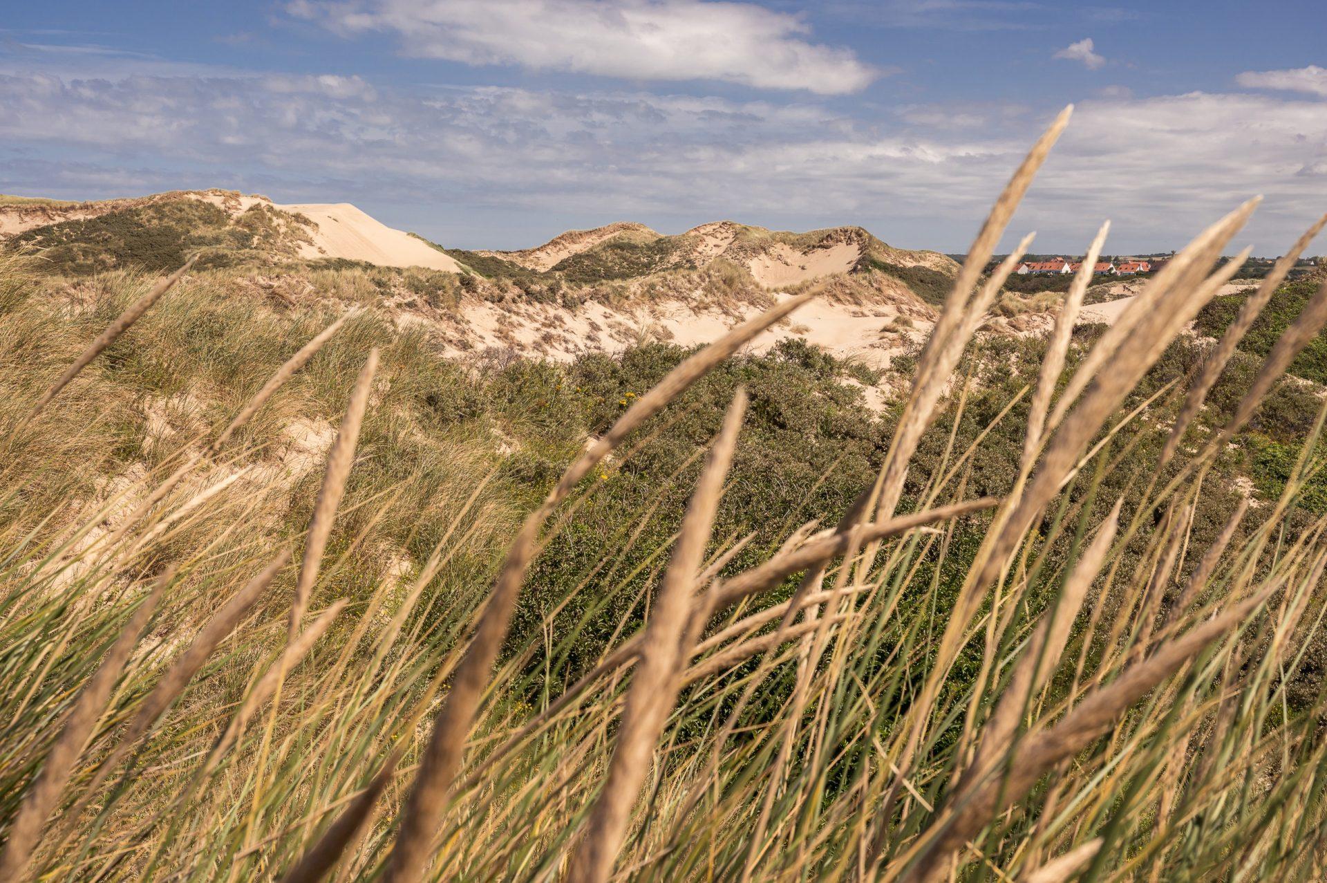 côte d'opale dunes de la slack