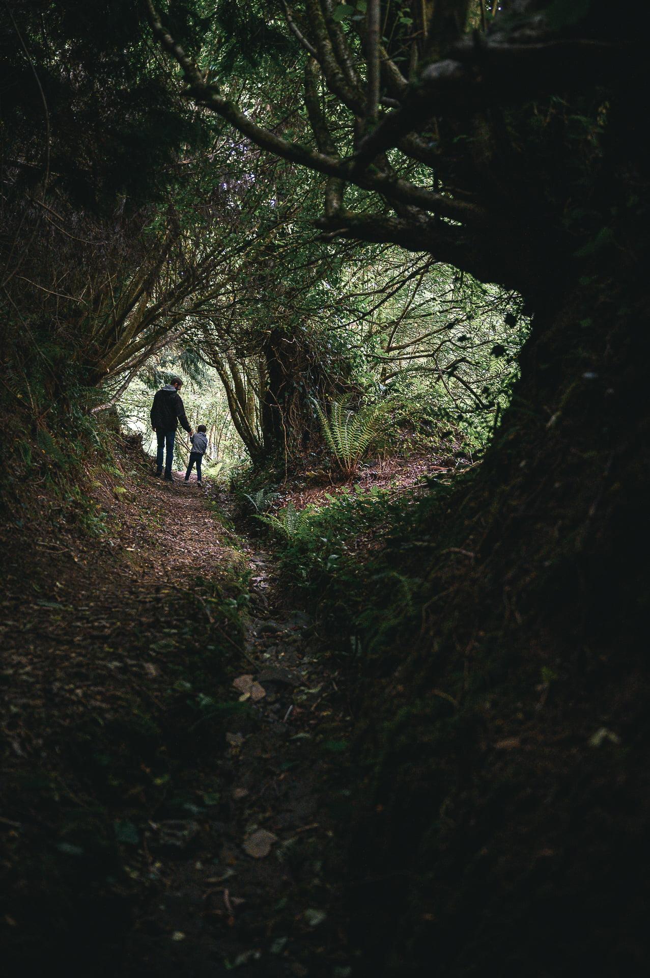 chemin creux visite de Belle-Isle-en-Terre