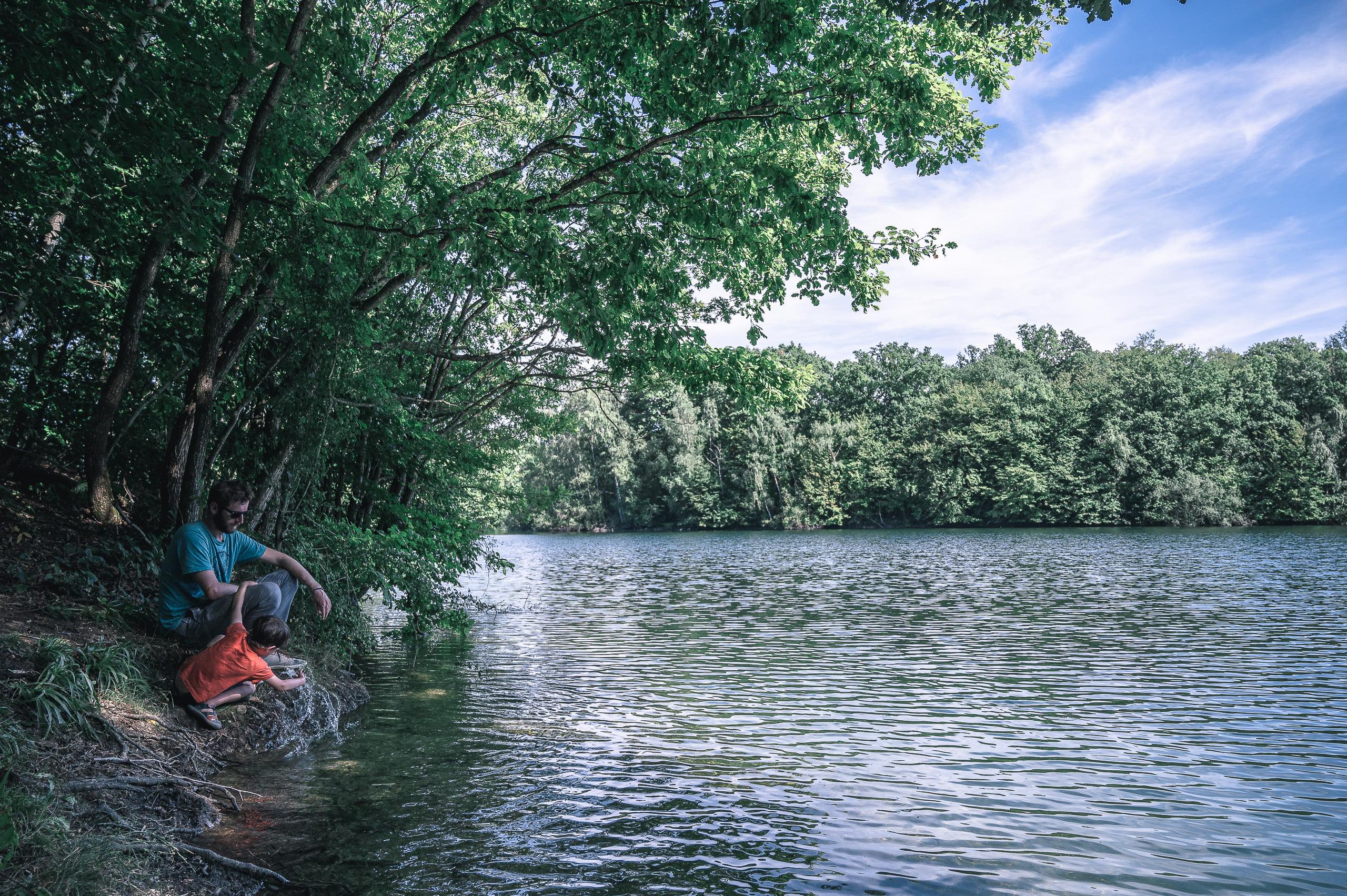 lacs de l'eau d'heure hainaut