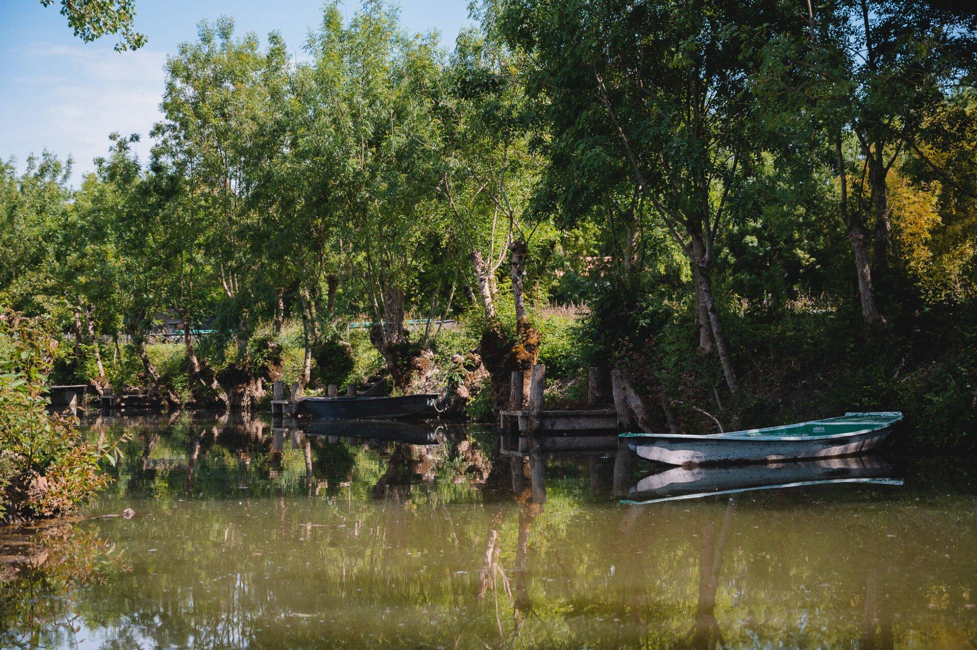 marais poitevin 8248 - Les globe blogueurs - blog voyage nature