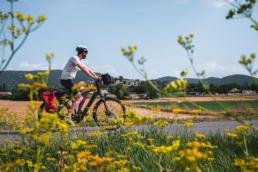 tour du luberon à vélo